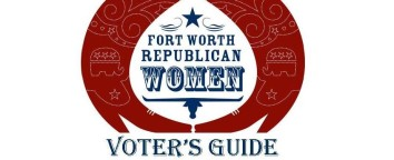 Online Voter's Guide Graphic 4